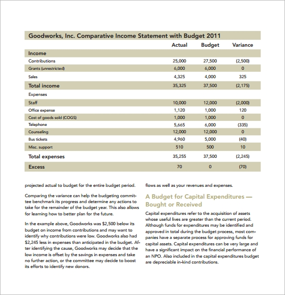 9+ Non Profit Budget Templates   Word, PDF, Excel