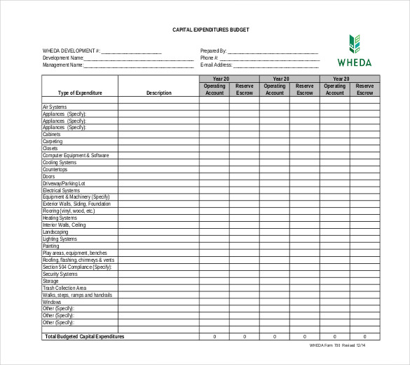 7+ Capital Expenditure Budget Templates   Docs, PDF, Excel | Free