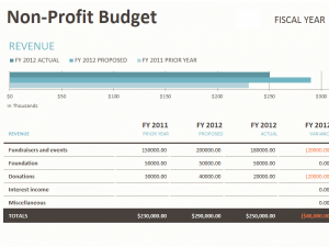 Budget template for NGOs | Word Excel Templates