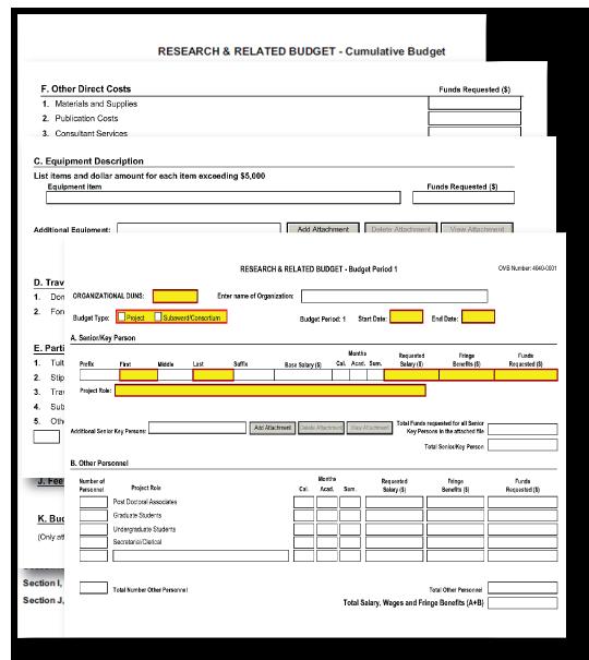 nih detailed budget template g300 rr budget form Ideas   hatunugi.com