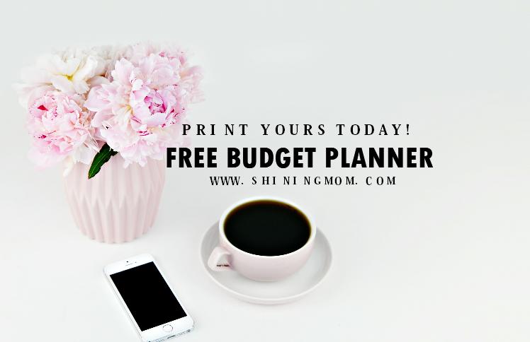 Budget Template Binder: 20+ Free Finance Worksheets!
