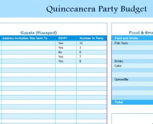 Quinceanera Party Budget   My Excel Templates