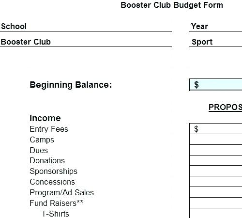 sports team budget template